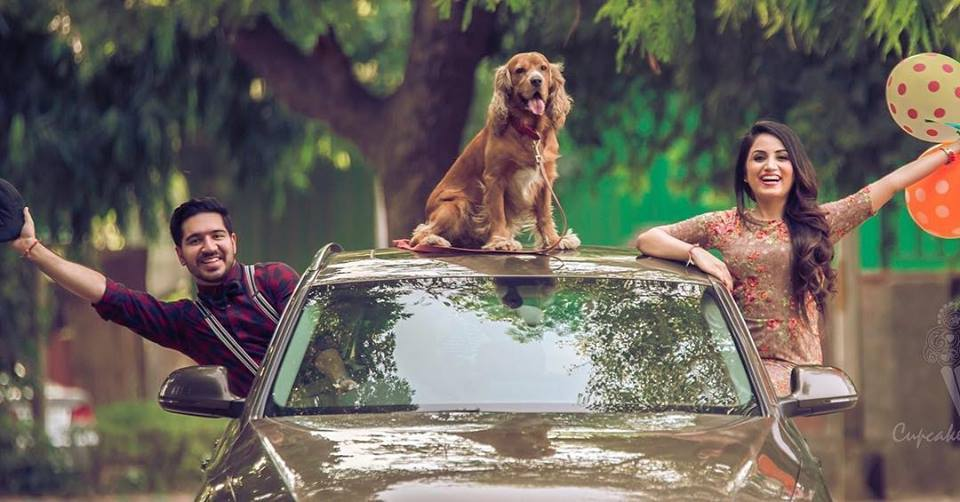 Including Your Pets Fabulous Pre-Wedding Shoot Ideas for Every Kind Of Couple!