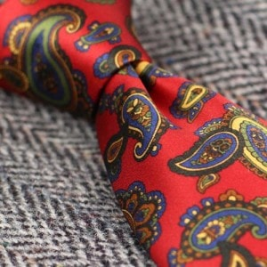 Bold Paisleys tie for any occasion