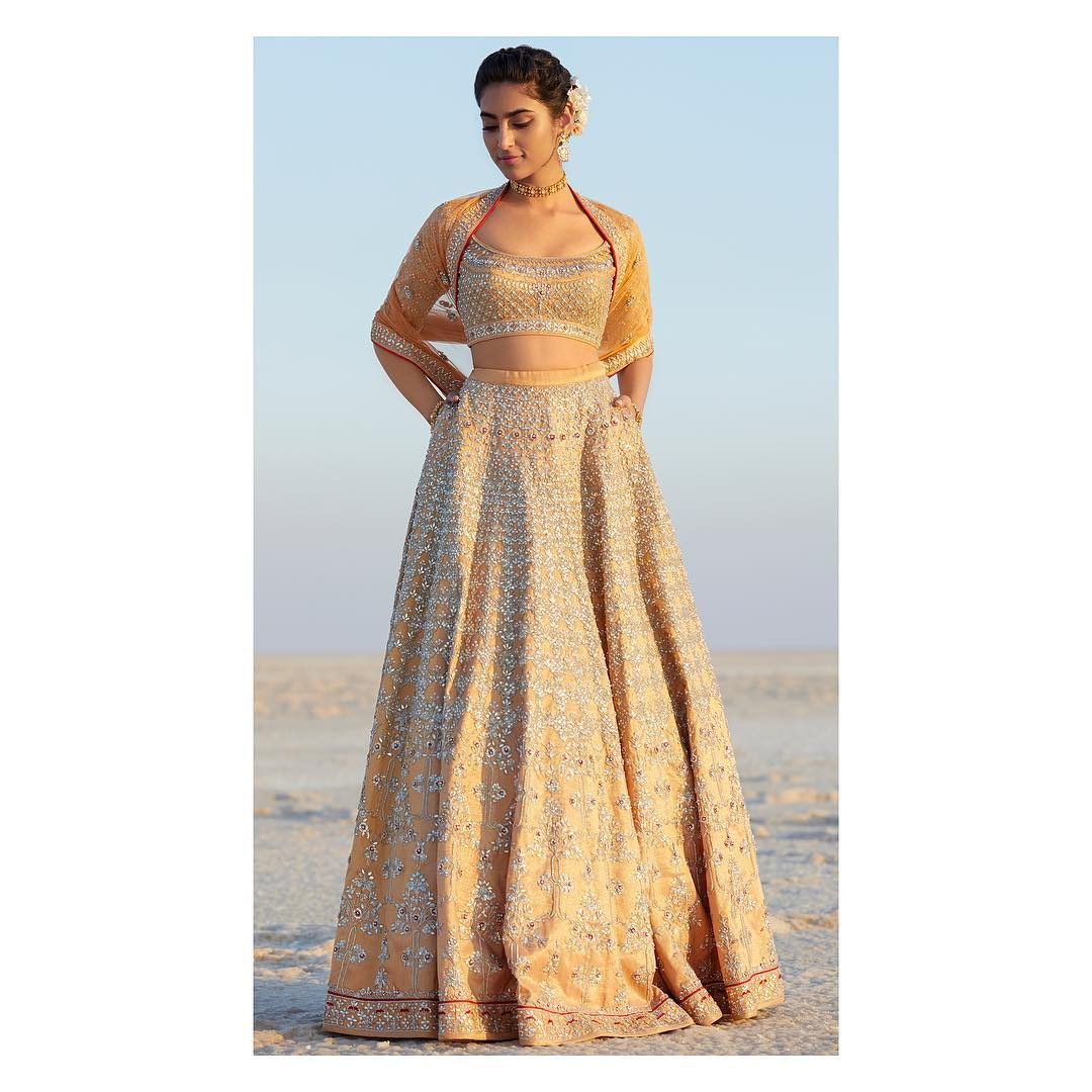 Aari Lehenga: Silk Saree Designs Inspired from Bollywood Divas