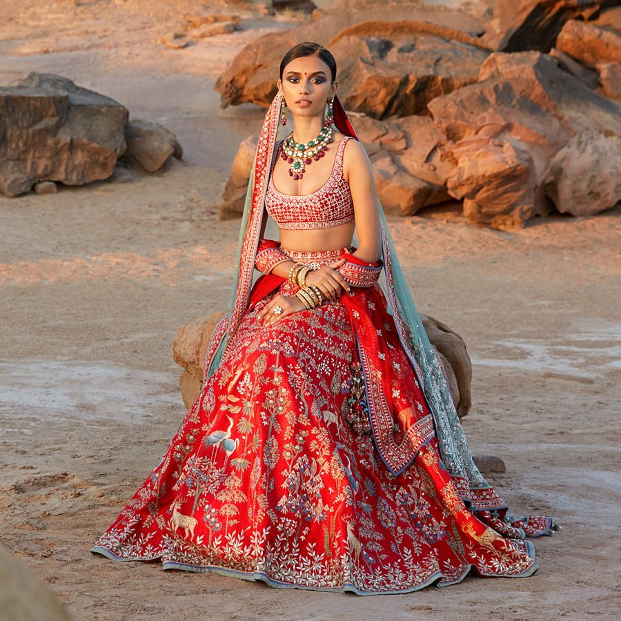 Rasa Lehenga: Silk Saree Designs Inspired from Bollywood Divas