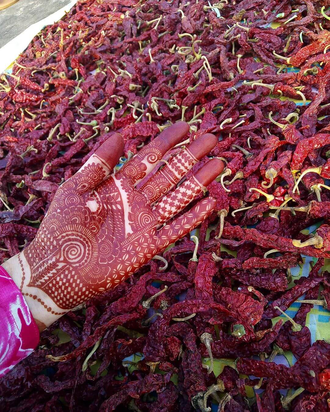 A Floral Affair Mehndi Design For Front Hand